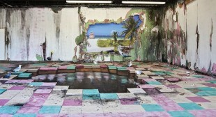 Artful Decomposition – installations by Valerie Hegarty