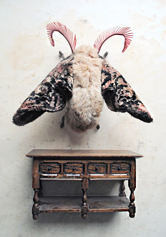 Surreal textile creatures by Mr. Finch